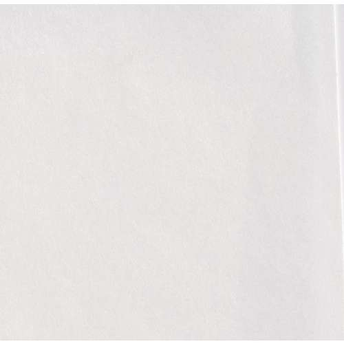Papier blanc pur Tosa Shi