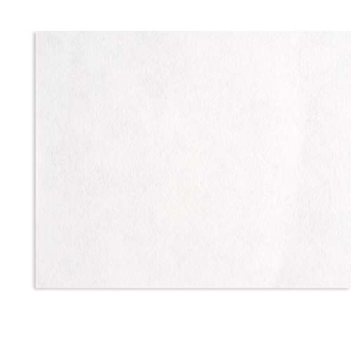 Papier japonais Awagami Silk Pure White