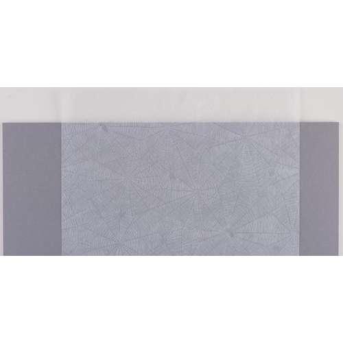 Spinnweben-Transparentpapier